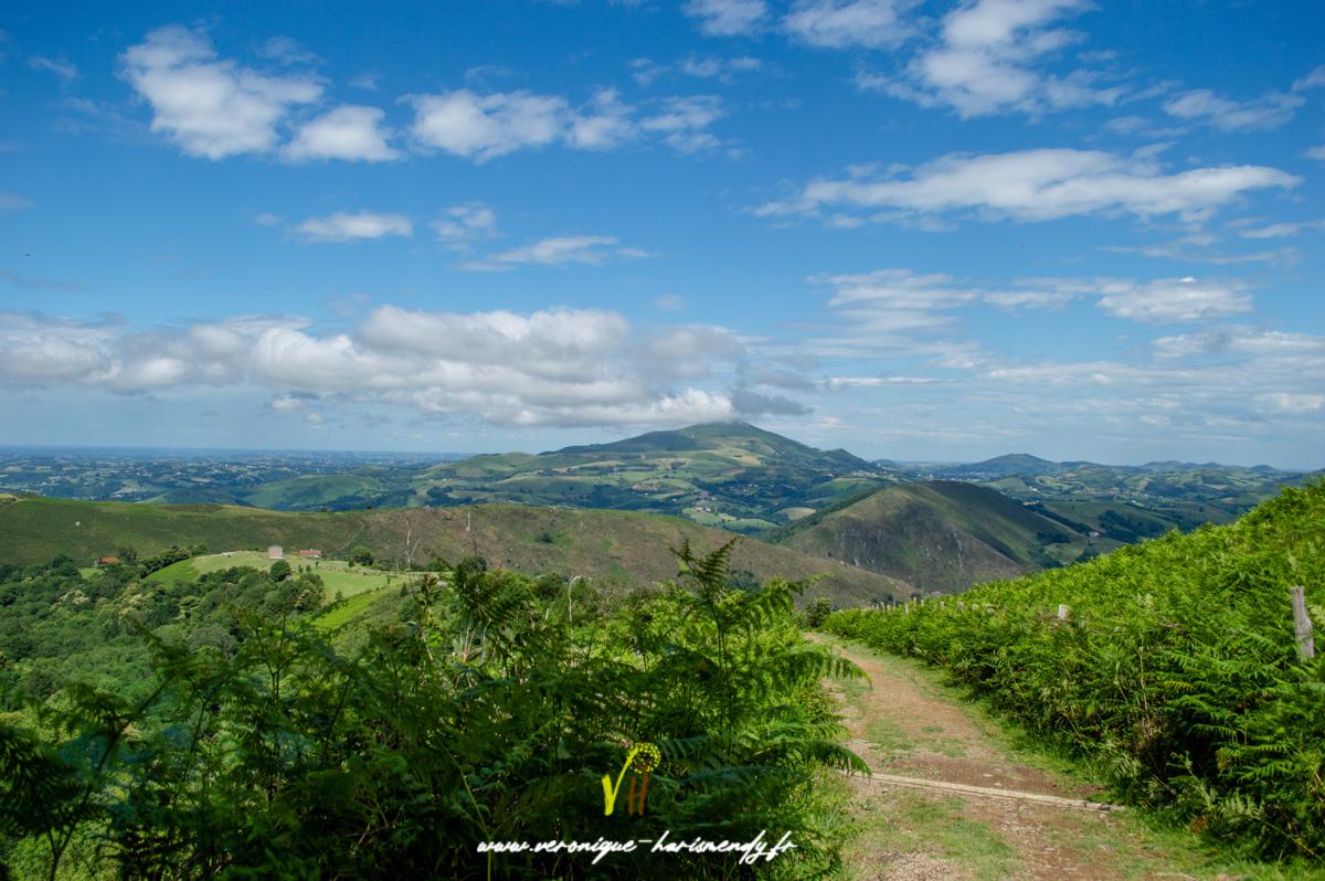 Vue du Mondarrain sur les villages Basques
